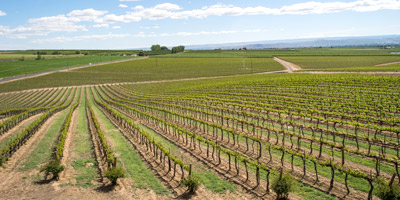 Yakima Valley Wine Related Businesses