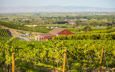 Yakima Valley Wine Tasting Routes